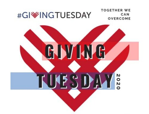 Support MSA on Giving Tuesday!